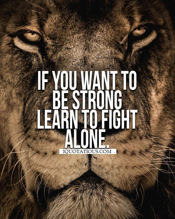 If You Want To Be Strong Learn To Fight Alone Warrior Quotes Lion Quotes Fighting Quotes