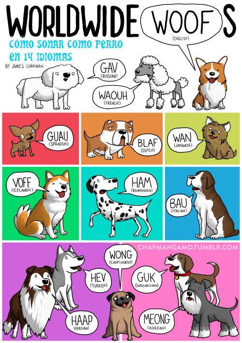 Idioma perro alrededor del mundo.