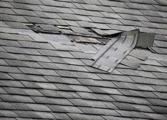 For patching a roof battered by storm damage, tarps nailed down with wood strips are the quickest and easiest fix.