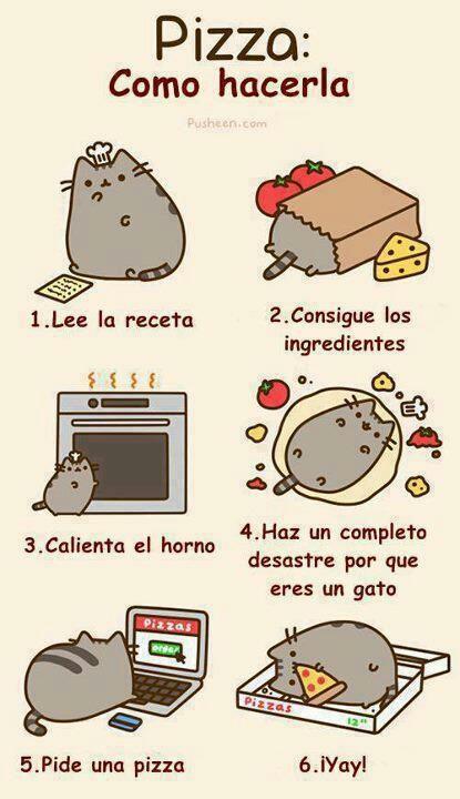 Me encanta este gato! Un otro ejemplo para mandatos. Puedes usar mandatos cuando explicando un recipe de comida.: