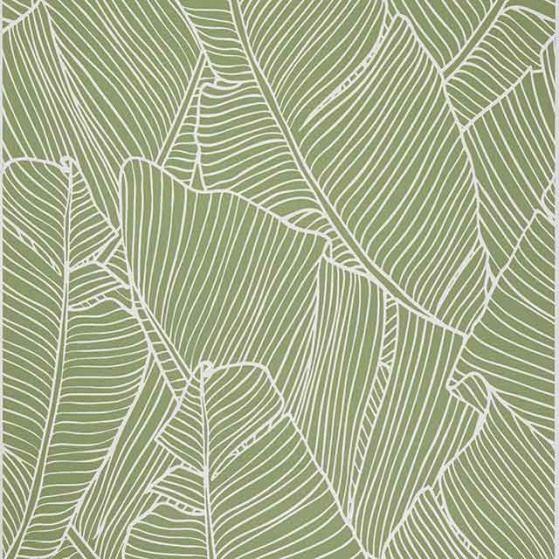 Papier Peint Vinyle Sur Intisse Vert Bananier Castorama Wall Wall Texture Vinyl Wallpaper Wallpaper Pattern Illustration