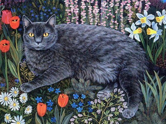 Cat portraits. Mimi Vang Olsen
