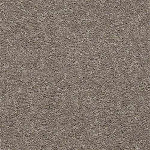 Shaw Industries Knockout Ii 15 Mountain Path Carpet El Paso Tx Carpet Warehouse Carpet Warehouse Carpet Industrial