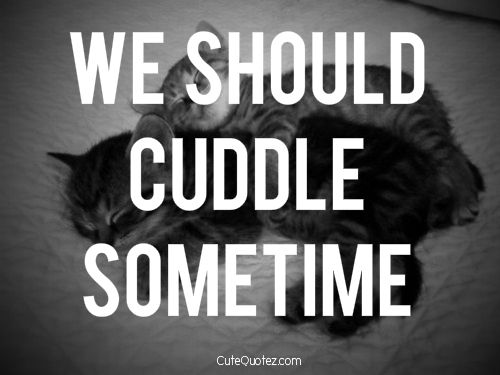 Crush Quotes, Romantic Love Quotes And Cuddle Buddy On