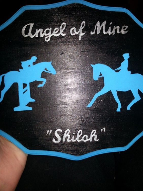 Jumping and dressage stall sign