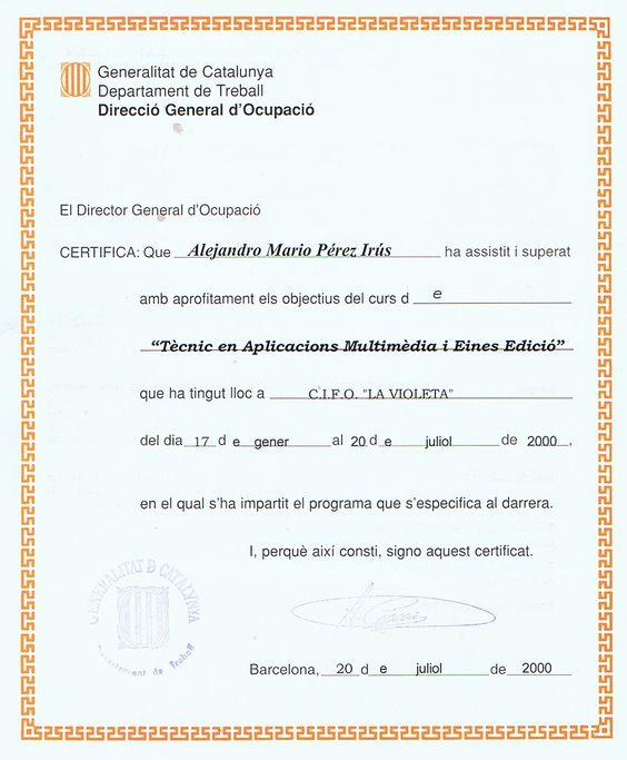 2000 01 Tecnico en Aplicaciones Multimedia Edicion Web Informatico Desarrollador AlejandroPI Alejandro Perez Irus