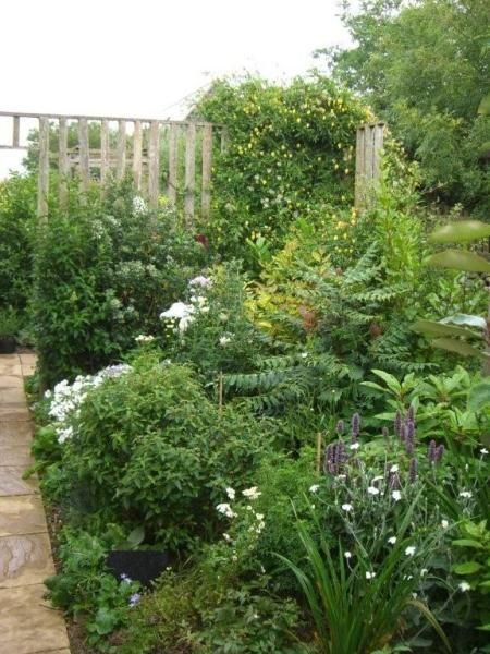 The Crystal Garden, Golwg yr Ynys Carnhedryn, nr St Davids Garden open - Daily Monday 1 June to Monday 15 June (1 - 5.30pm). NGS Gardens open for charity - Garden. 3 miles/10 mins north
