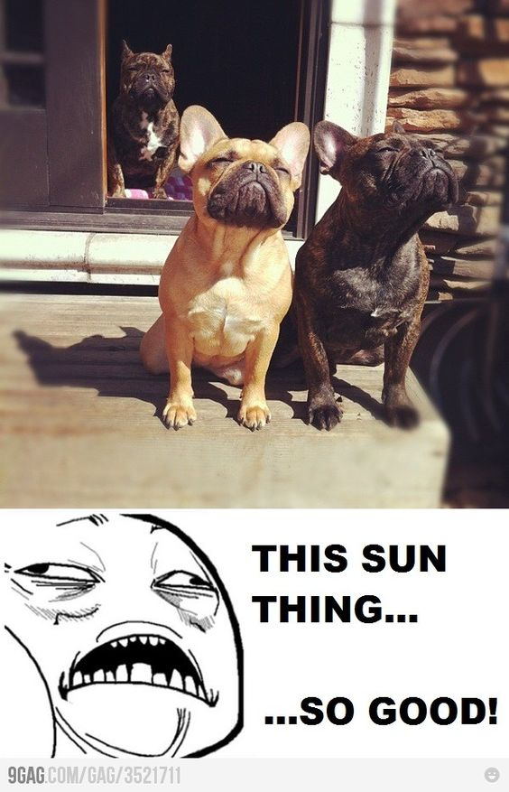 This sun thing is so good