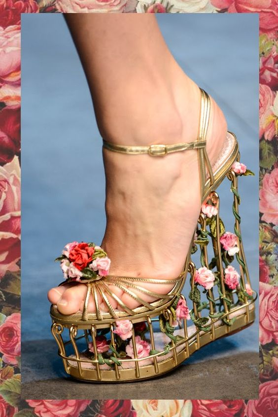 Rose caged shoes by Dolce & Gabanna. That little piggy is holding on for dear life! lol!!