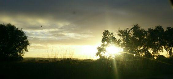 Nascer do Sol em Asseiceira, Tomar