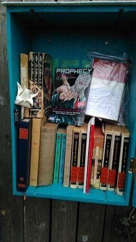 Boite à livres Charleroi 1