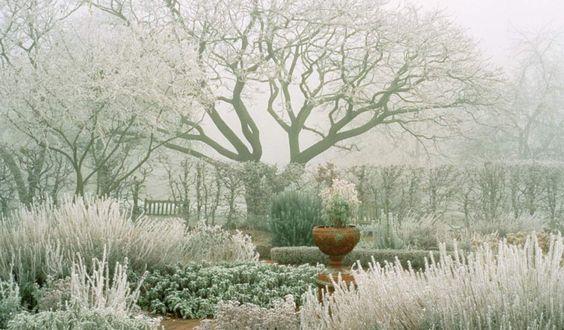 Design laid bare. Herb garden at RHS Wisley in Surrey. Photograph: John Glover