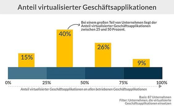 Stand der Virtualisierung der Geschäftsapplikationen im RZ