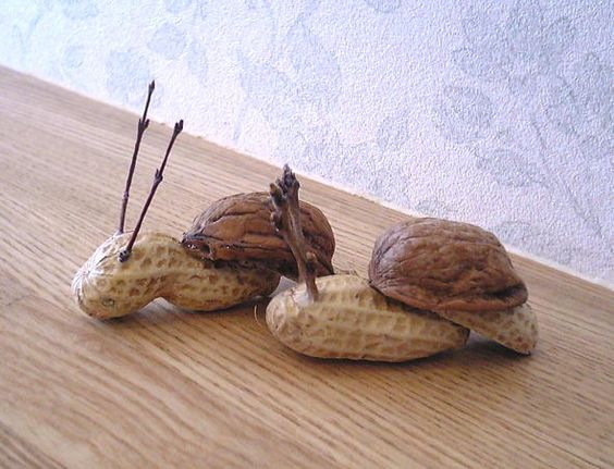 """Snail"" nature craft:"