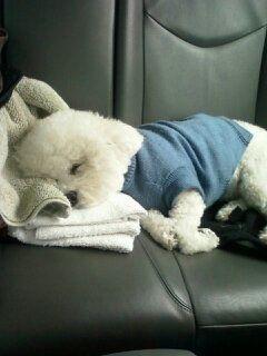 Que ternura!! Male durmiendo