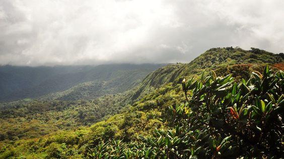 Paysages de Monteverde au Costa Rica