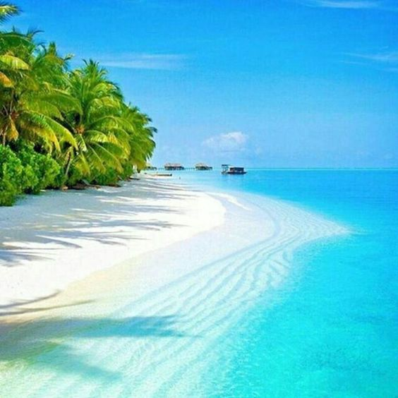 88 The Most Beautiful Beach in The World - #beach #Beautiful #World