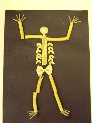 Skeletons kindergarten study | Anatomy | Pinterest