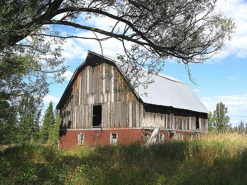 An old barn near Cook, MN
