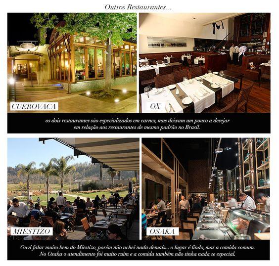 restaurant tips / dicas de restaurantes / chile / santiado / osaka / miestizo / ox / cueovaca / bar and restaurant