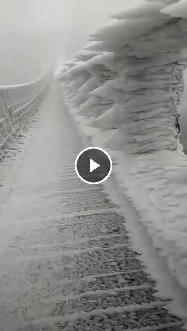 Gelo invade ponte ao estremo.