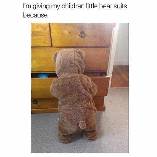 15 Teddy Bear Memes That Are Cute And Funny At The Same Time