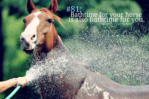 Every time. I've given up hope that I will be completely dry after I've given my horse a bath.