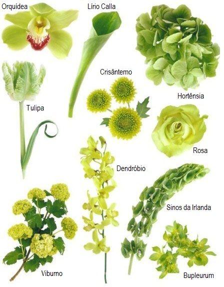 Quer um help pra escolher as flores do seu casamento? Vamos ver algumas das flores mais usadas?