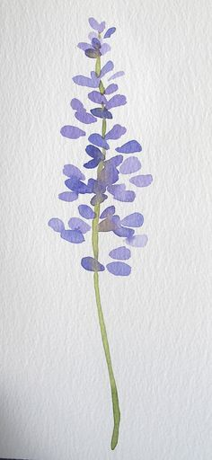 Watercolor flowers on Behance