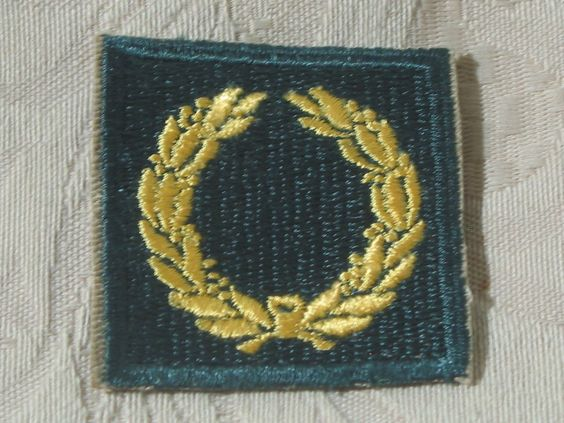 MILITARY SHOULDER PATCH Meritorious Unit Citation Gold Wreath Vietnam Era Used  Junk_623  http://ajunkeeshoppe.blogspot.com/