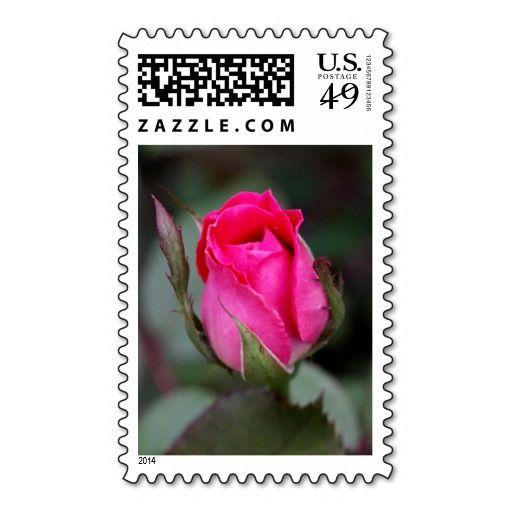 Blooming Red Rose Bud, floral postage
