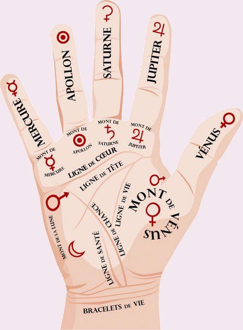 La forme de voyance qui consiste à lire et interpréter les lignes de la main s'appelle la chiromancie. On peut également comprendre sa personnalité en analysant les monts de la main, etc