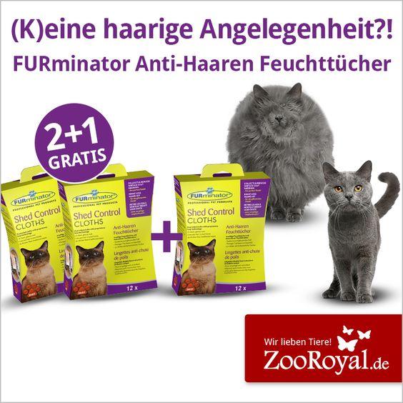 Profitiere jetzt von unserer 2+1 Gratis-Aktion* für #FURminator Anti-Haaren Feuchttücher und entferne zuverlässig los gekämmte Haare aus dem Fell deines tierischen Lieblings.  *Aktionszeitraum: 14.12. - 03.01.16 und nur solange der Vorrat reicht.  Katze: http://www.zooroyal.de/aktionen/katze/furminator-shed-control-cloths-2plus1/  Hund: http://www.zooroyal.de/aktionen/hund/furminator-shed-control-cloths-2plus1/