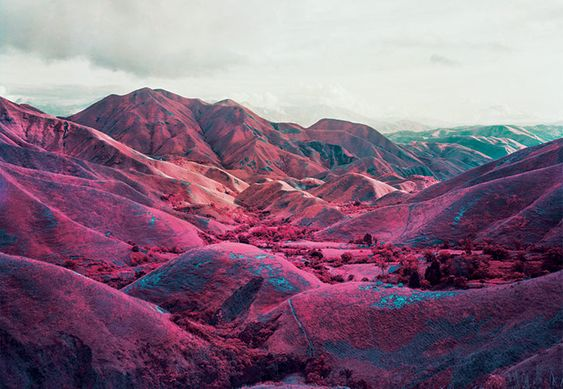 Soldiers' uniforms turn purple, vegetation magenta … the infrared film used by photographer Richard Mosse forces us to see the conflicts of Congo in different ways