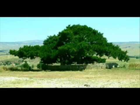 Youtube Folk Song Youtube Folk Music