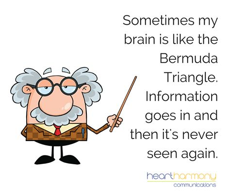 Image result for my brain is like the bermuda triangle