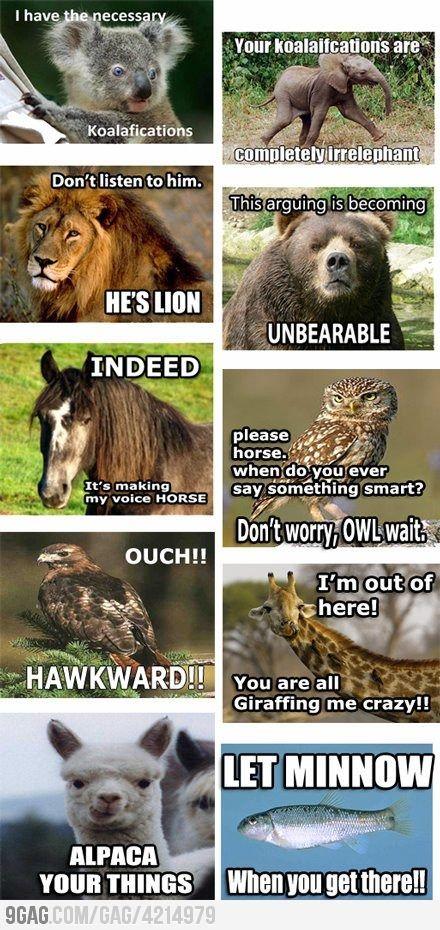 All the animal puns! Fantastic :): Puns Pun, Giggle, Funny Picture, Funny Stuff, Love Puns, Funny Animal, Animal Puns