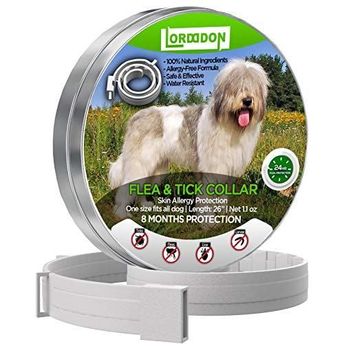 Lordddon Flea And Tick Prevention Collar Tick Prevention Flea