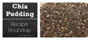 Chia Pudding Recipe Roundup