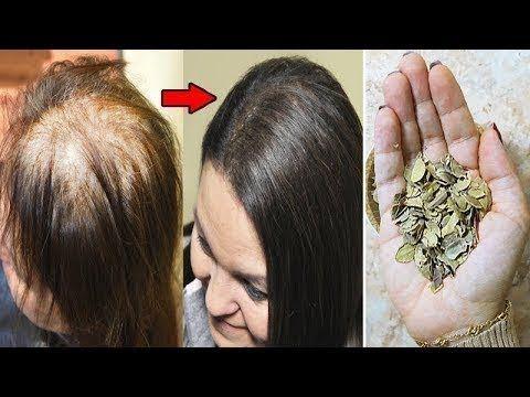 حتى لو كنت صلعاء مكون واحد من البيت سيجعل شعرك طويل وكثيف يلامس الأرض وخال من الشيب Youtube Grow Hair Hair Lengthening Long Hair Video