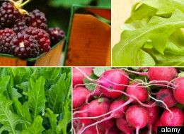 7 May Superfoods...