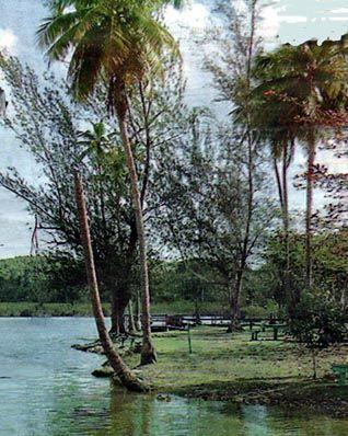 Laguna Tortuguero-Reserva natural-Puerto Rico