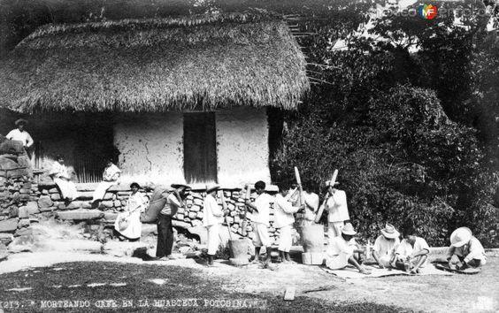 MorteandocaféenlaHuastecaPotosína (Fotos Antiguas de México).