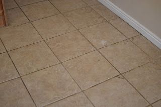The Hippie Mama: Tile & Grout Cleaner
