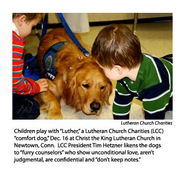 The Lutheran Church  Missouri Synod  Lcc Comfort Dogs. I Want To Adopt A Child Managed Server Backup. Accelerated Bachelors Of Nursing. Business Operations Degree A Z Car Insurance. Caught On Surveillance Camera. How To Use Word Processing Software. Security System Wireless Medicare Find A Plan. Microsoft Project Tracking Software. University Of Maryland Orthopedics