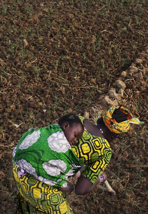 Photo by Joe Penney of Bintou Samake of Heremankono, Mali, planting beans while carrying her son, Mahamadou on her back.