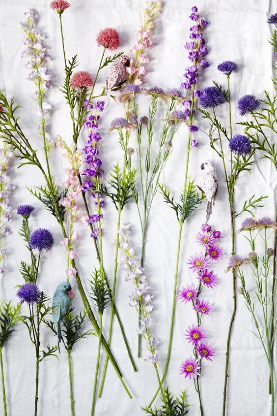 Flowers and lavender                                                                                                                                                      More