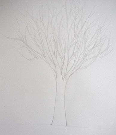 dessiner un arbre sans feuilles dessin pinterest comment simple et crayons. Black Bedroom Furniture Sets. Home Design Ideas