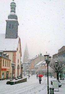 Der nasse Schnee ließ an Straßenrändern Bäume knicken