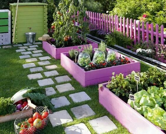 faire son potager en couleur dans le jardin projet travaux jardin pinterest fils. Black Bedroom Furniture Sets. Home Design Ideas